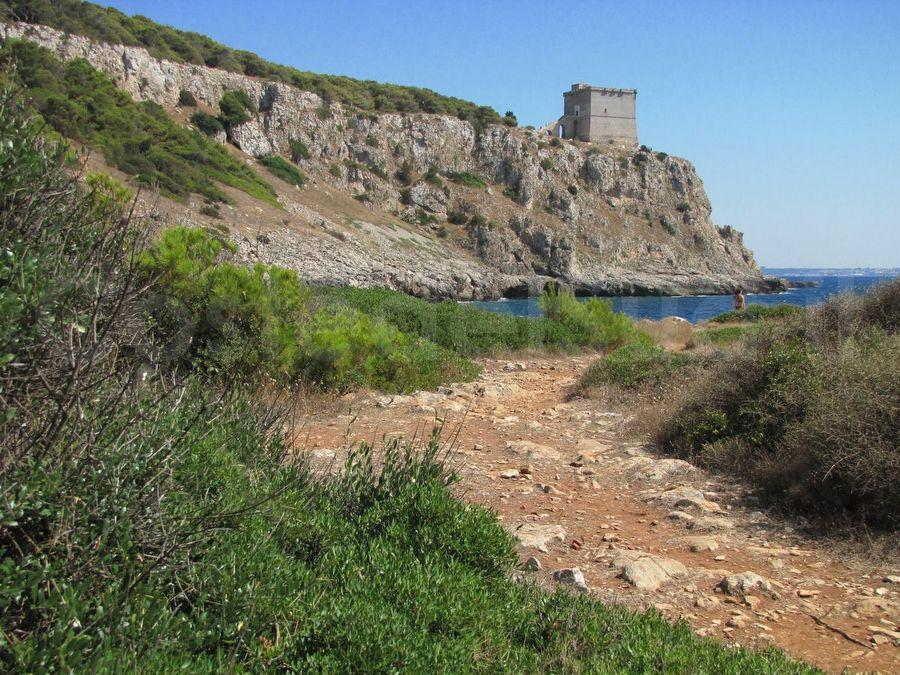 torre Dell Alto Vista Da Porto Selvaggio