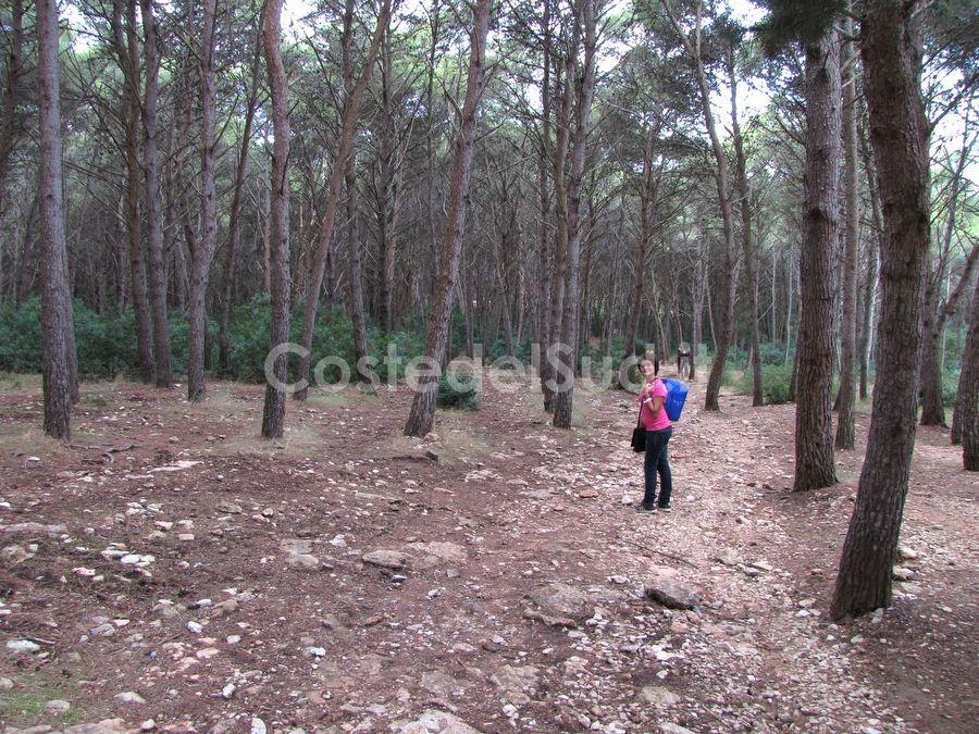 boschetto Di Porto Selvaggio