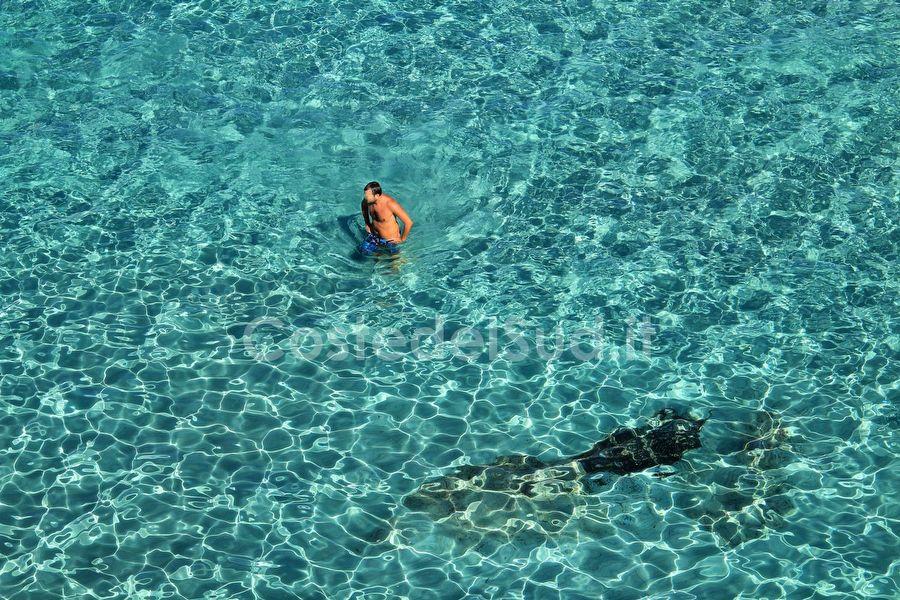 acque Trasparenti