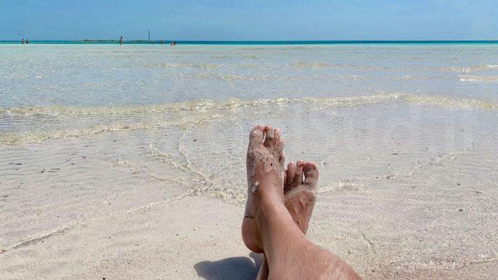 Salento +11% a dirlo è Coste del Sud primo sito di prenotazioni case vacanza in Salento