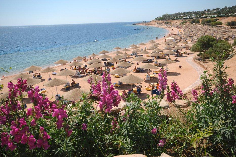139086_Hotel_Domina_Coral_Bay_Sultan_Resort_Coral_Bay_1200_4842_