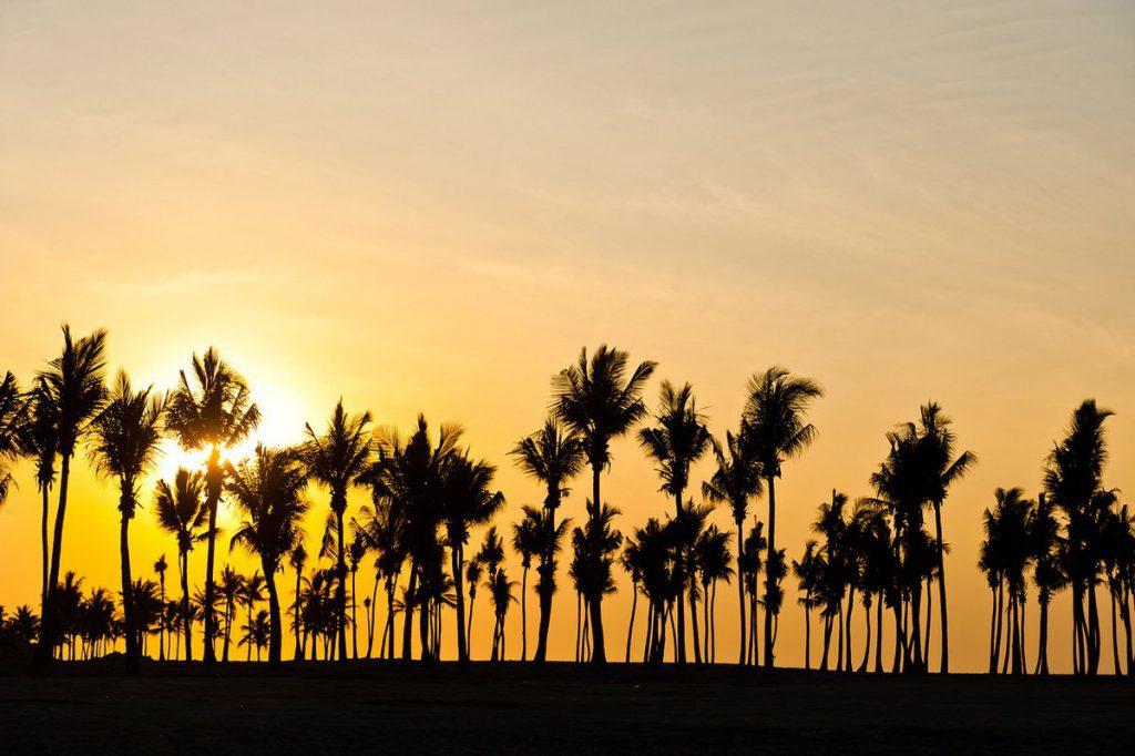176718_Resort_Fanar_Salalah_Eden_Village_1200_4842_